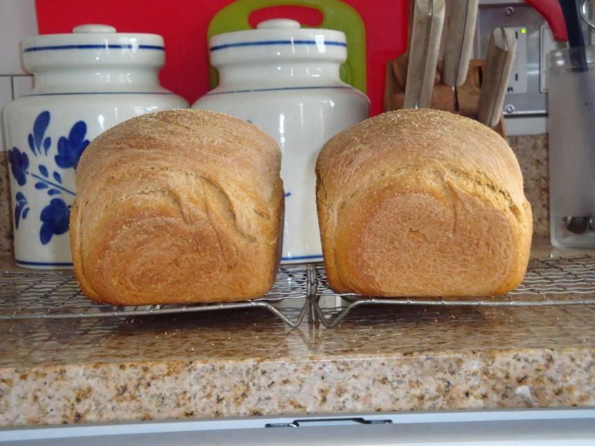 bread! 001