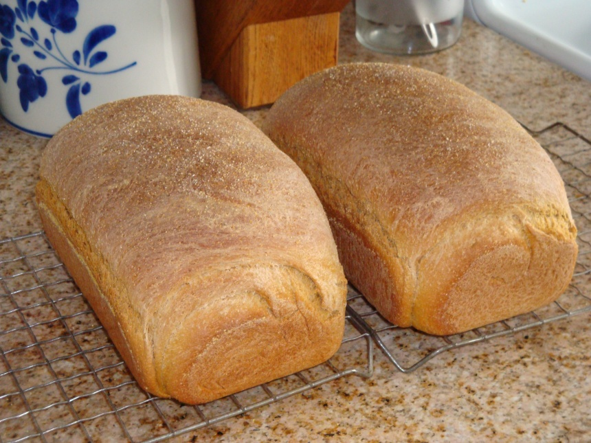 bread! 002